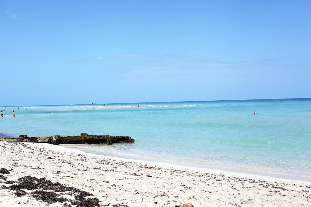miami-beach-plaza