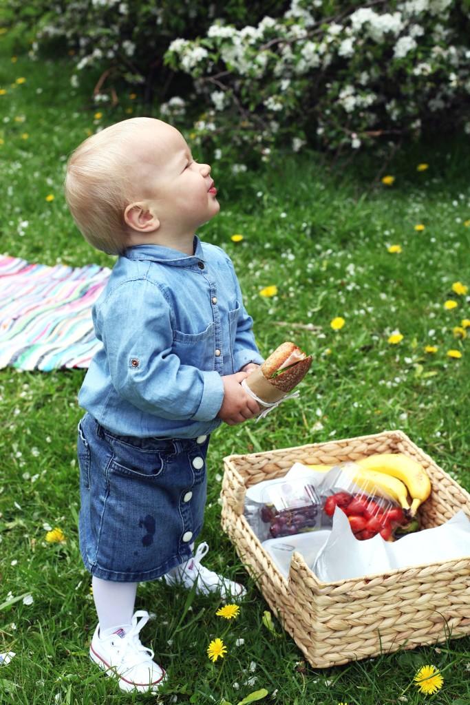 milla-na-pikniku