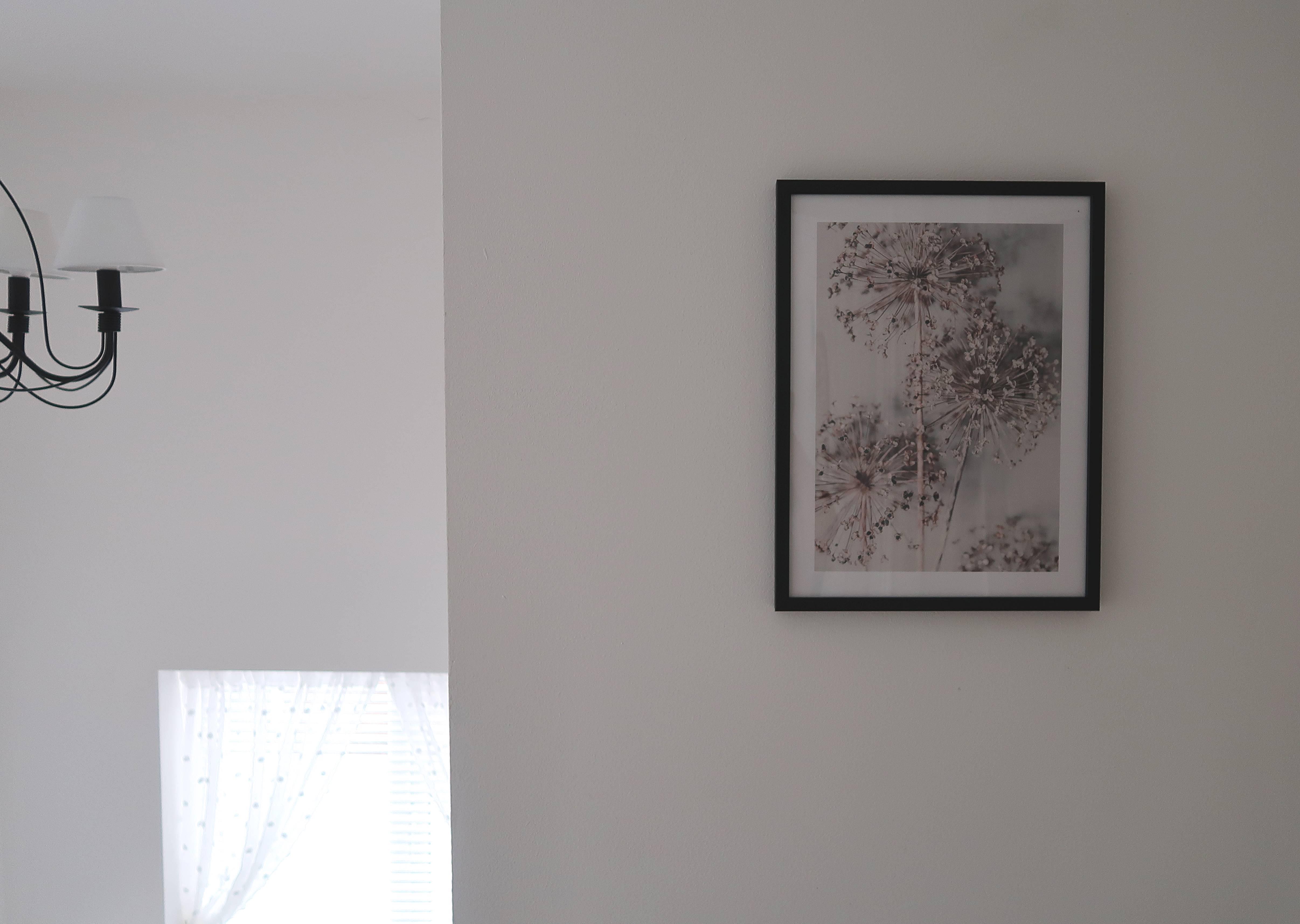 metamorfoza korytarza